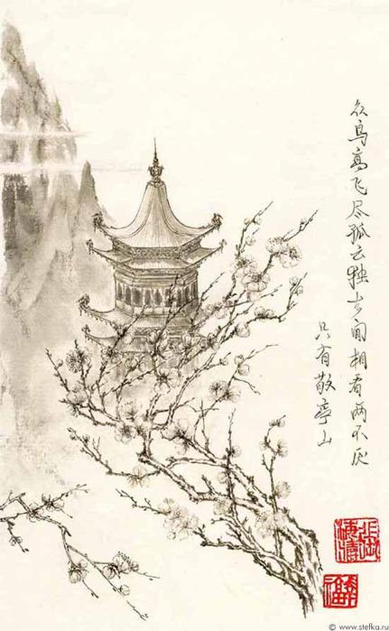 ветка сакуры рисунок: