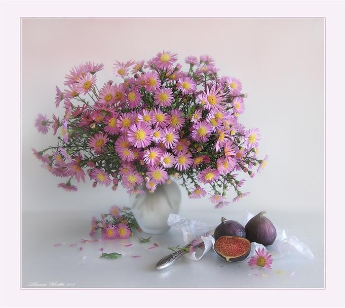 Рисунки карандашом цветы лилии для