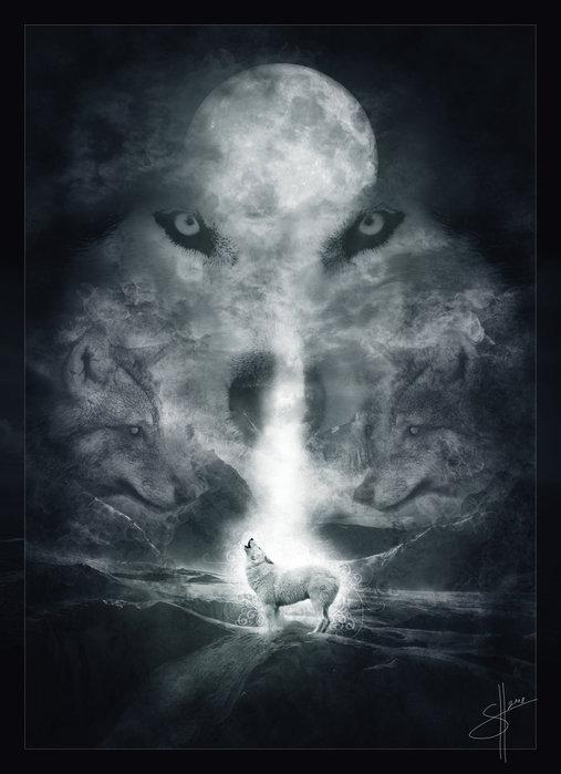 """Схема вышивки  """"Волк."""
