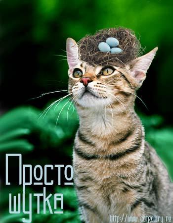 http://img1.liveinternet.ru/images/attach/b/3/41/879/41879413_ne_bud.jpg