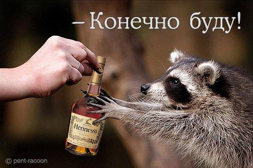 прикольные картинки про пьянку: