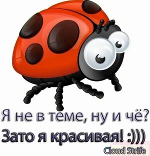 6011338_2808082_YA_krasivaya (300x312, 31Kb)