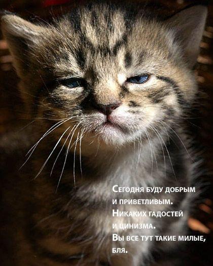 32_pics_53863 (420x525, 52Kb)