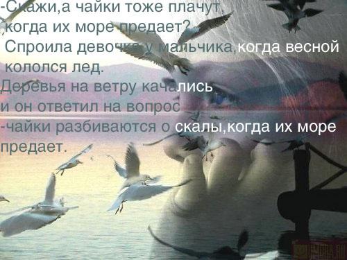 (500x375, 59Kb)