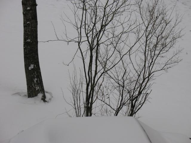Зима. Москва. Ноябрь 14 2007 год
