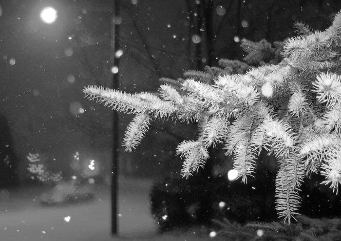 Падал снег)