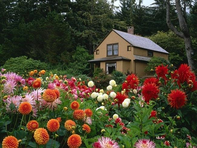 Садовые домики!