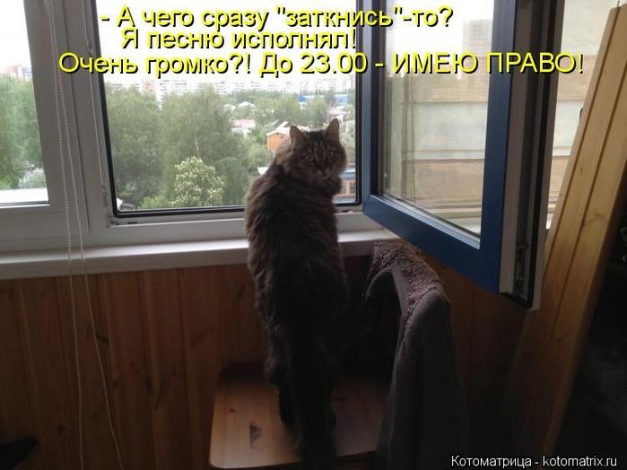 kotomatritsa_xv (700x524, 209Kb)