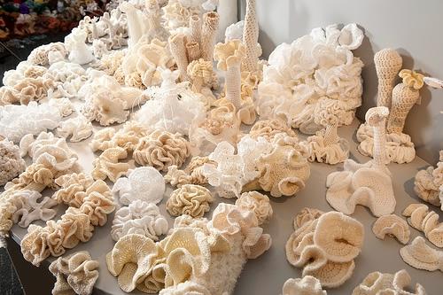 crochet-coral-bleaching (500x333, 194Kb)