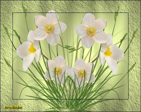 белые-цветы (450x357, 321Kb)