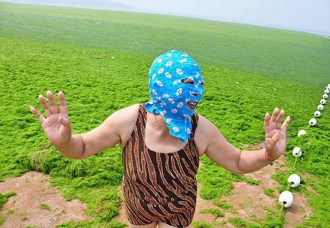 зеленые водоросли на пляже в китае фото (680x470, 236Kb)