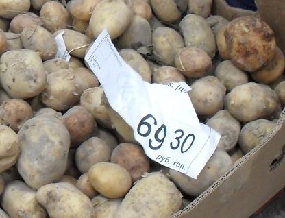 Картошка в Магните (416x318, 110Kb)