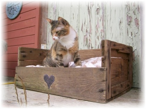 Домик для кошки из старых вещей