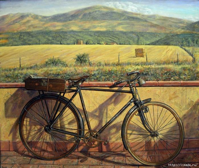 mi-bici Renedo (700x590, 415Kb)