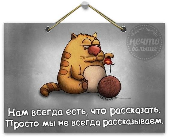 1373854886_frazki-13 (564x459, 92Kb)