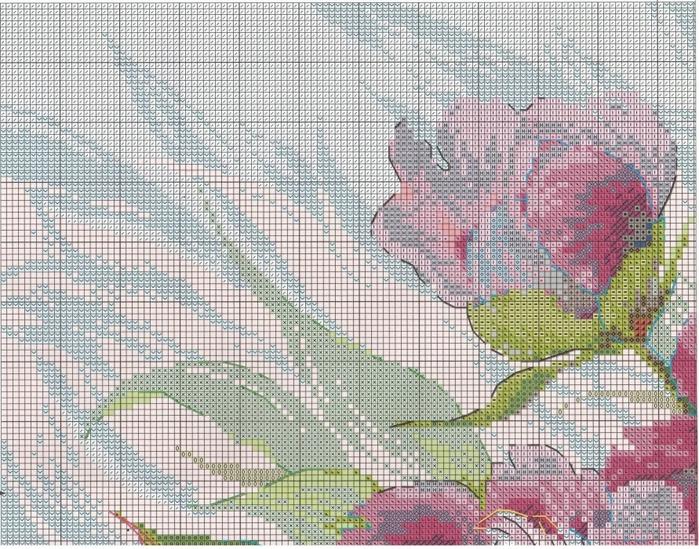 Stitchart-rozovye-piony1 (700x549, 398Kb)