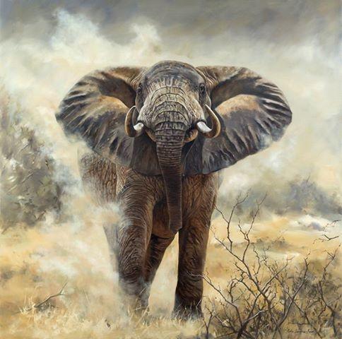 дикая пирода африки Karen Laurence-Rowe 6 (484x480, 125Kb)