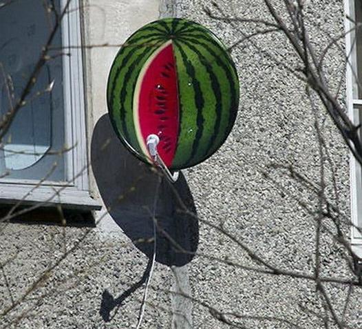 """Антенна-""""арбуз"""" (декорирование спутниковой тарелки)"""