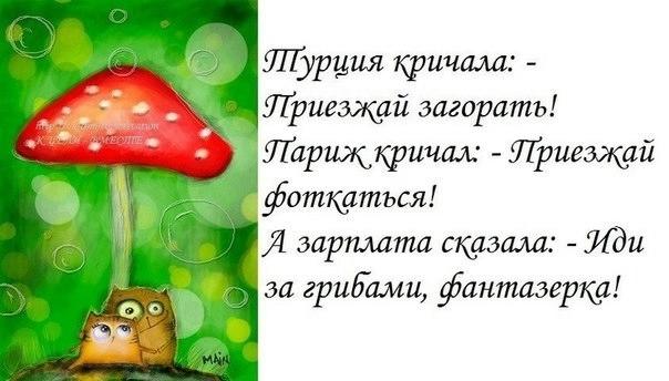1374202115_frazki-12 (604x344, 105Kb)