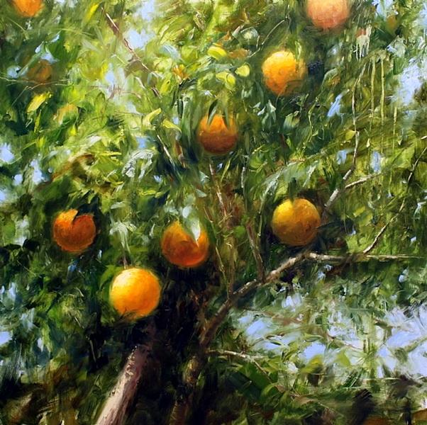 oranges (602x600, 460Kb)