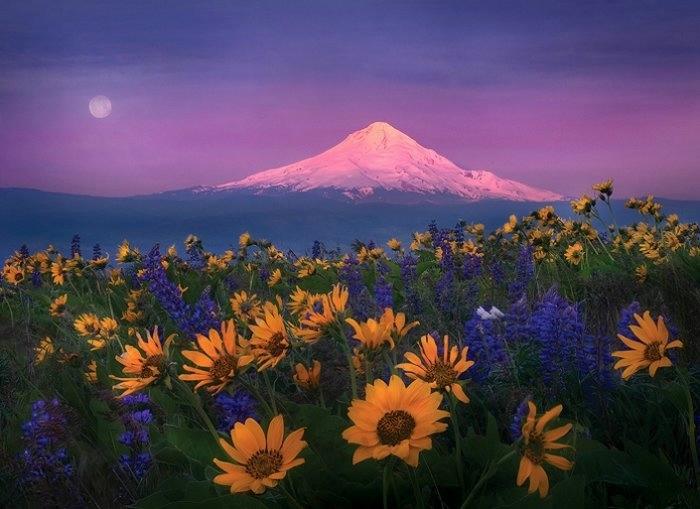 Marc Adamus пейзажи природы фото 16 (700x509, 149Kb)