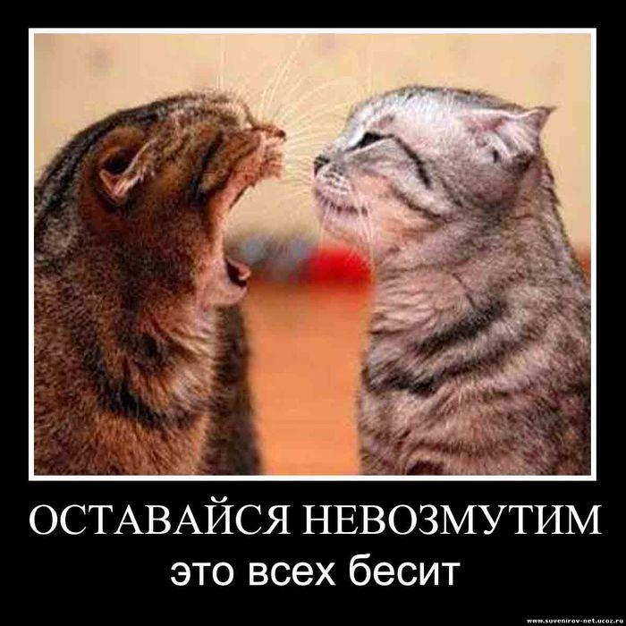 1344671593_pr_4_1-1 (700x700, 72Kb)