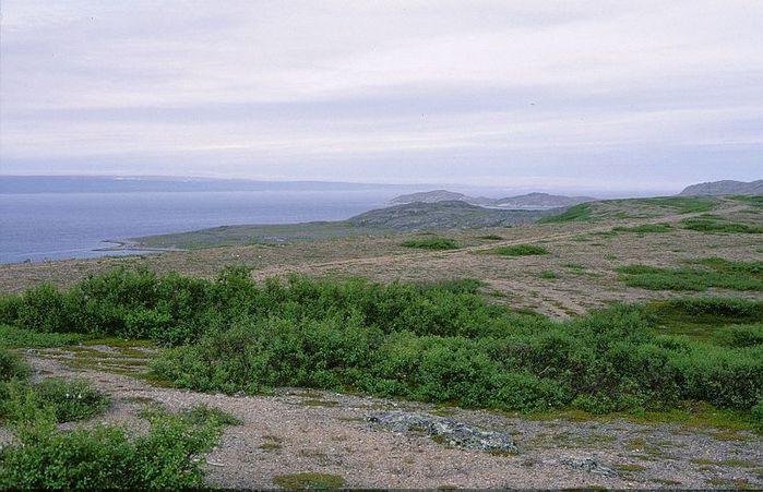 3578968_Varangerfjord_Kokkokanta (700x451, 71Kb)