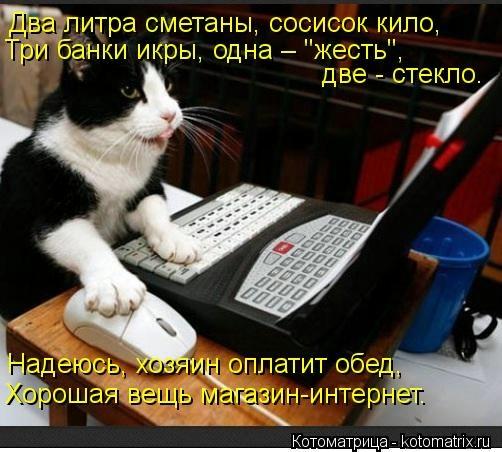 kotomatritsa_05 (502x452, 129Kb)