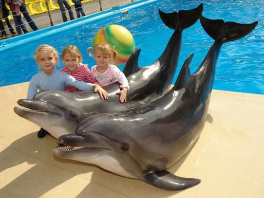 дети и дельф. 7 (542x407, 205Kb)