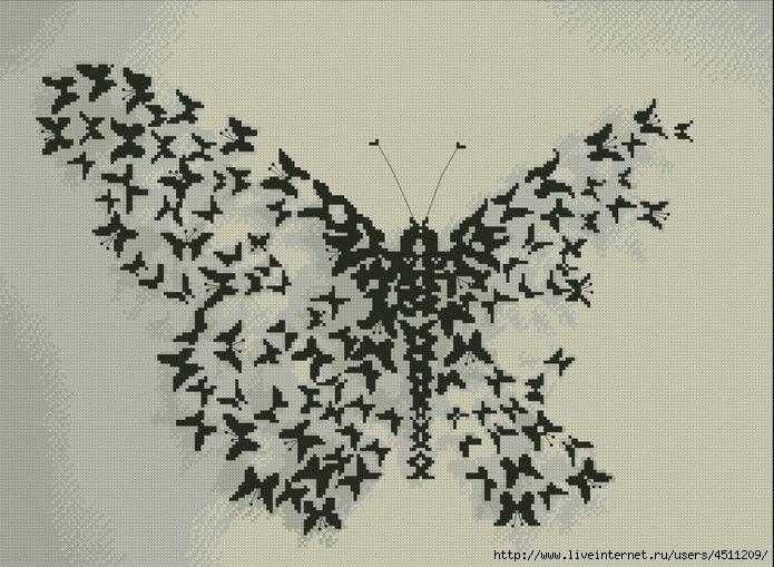 75671840_3971977_Butterflies_002 (695x509, 226Kb)