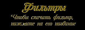 79599152_filtuy (300x105, 21Kb)