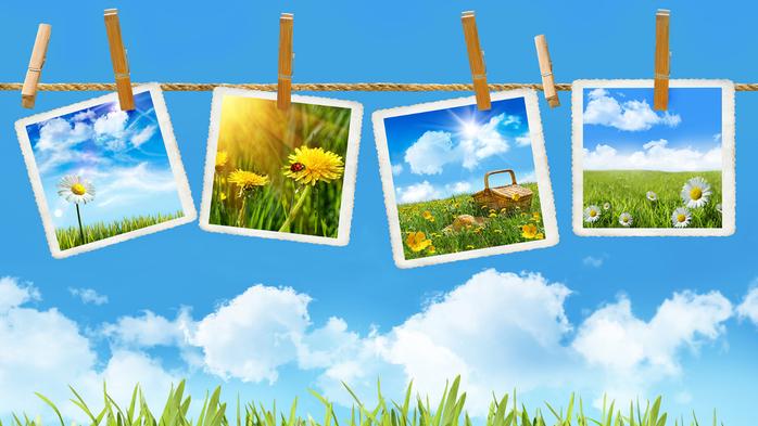 Лето – пора чудесных фотографий!
