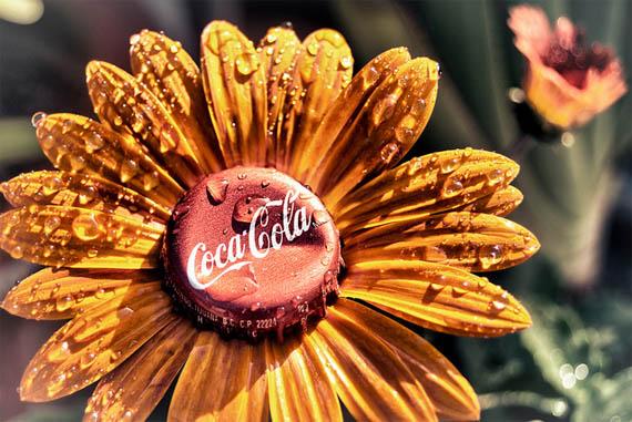 Как использовать Coca-Cola в хозяйстве/2565092_Cola5 (570x381, 94Kb)