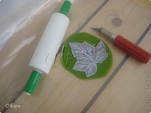 Красная смородина из ювелирной эпоксидной смолы (40) (520x390, 76Kb)