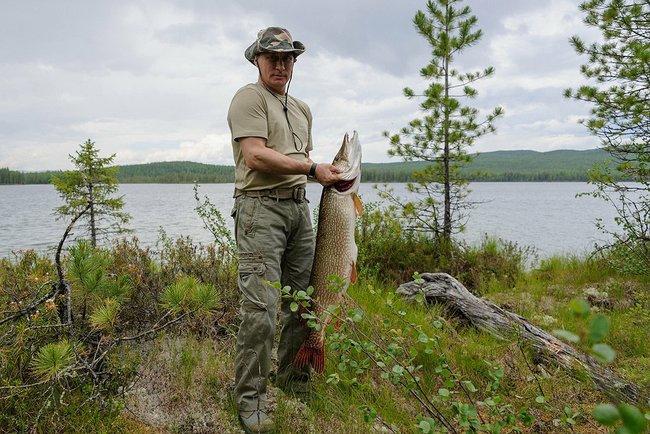 Путин поймал щуку. Фото из Тувы © пресс-служба Президента России 1 (650x434, 243Kb)
