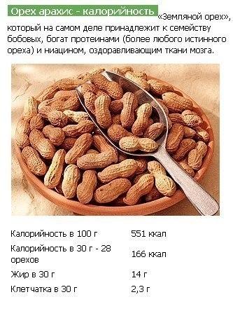 орешки (3) (333x454, 127Kb)