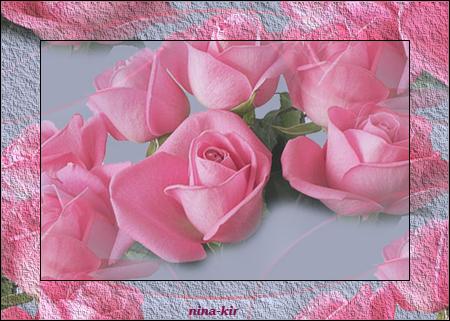 Розы-н (450x321, 303Kb)