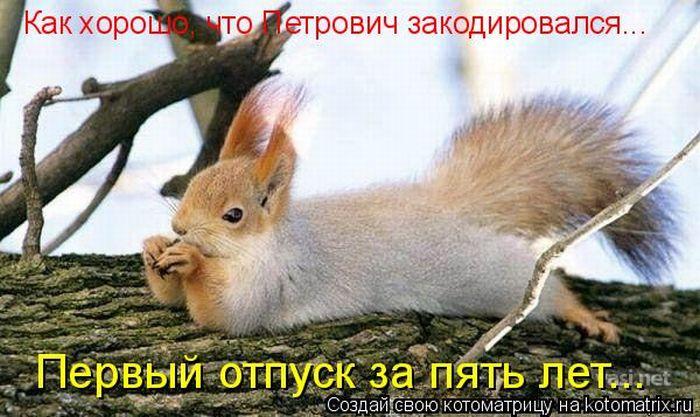 4326608_1296816143_kotomatrix_09 (700x417, 69Kb)
