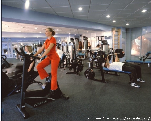 Готовый бизнес план фитнес клуба/1374935621_fitnes_centr (640x511, 218Kb)