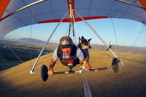 шэдоу пес дельтапланерист фото (600x400, 127Kb)