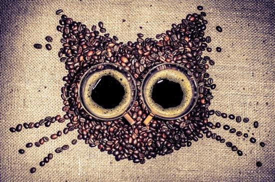 РЕЦЕПТЫ ПРИГОТОВЛЕНИЯ КОФЕ ПО ЗНАКАМ ЗОДИАКА 103447935_coffeecat