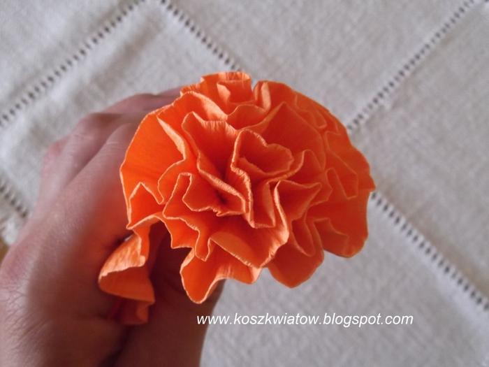 Гвоздики из гофрированной бумаги. Мастер-класс (18) (700x525, 197Kb)