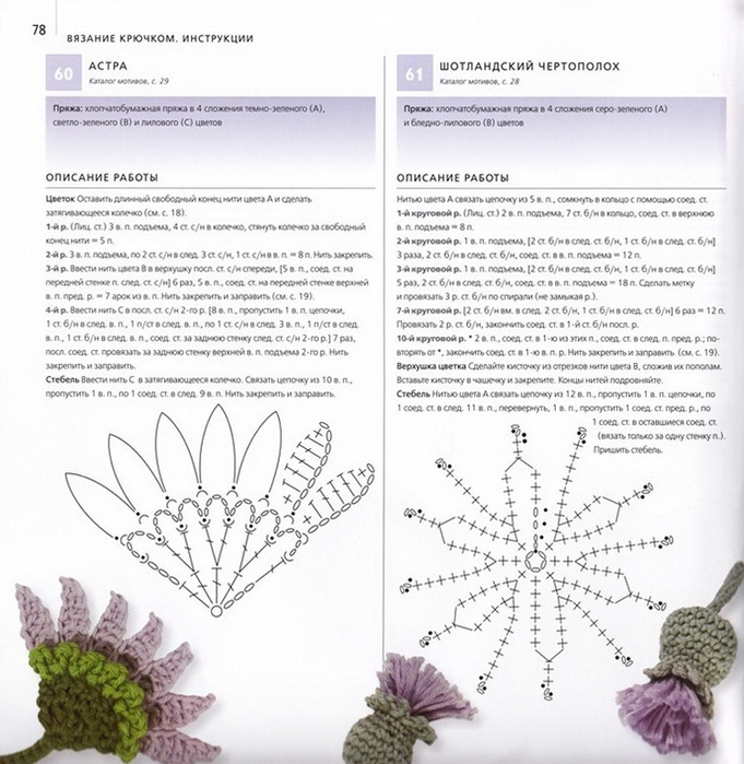 100 вязаных цветов спицами и крючком (75) (681x700, 295Kb)