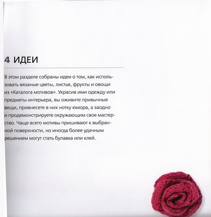 100 вязаных цветов спицами и крючком (106) (681x700, 195Kb)