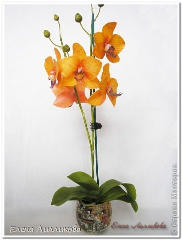 Керамическая флористика. Видео по лепке орхидеи из полимерной глины (3) (365x480, 68Kb)