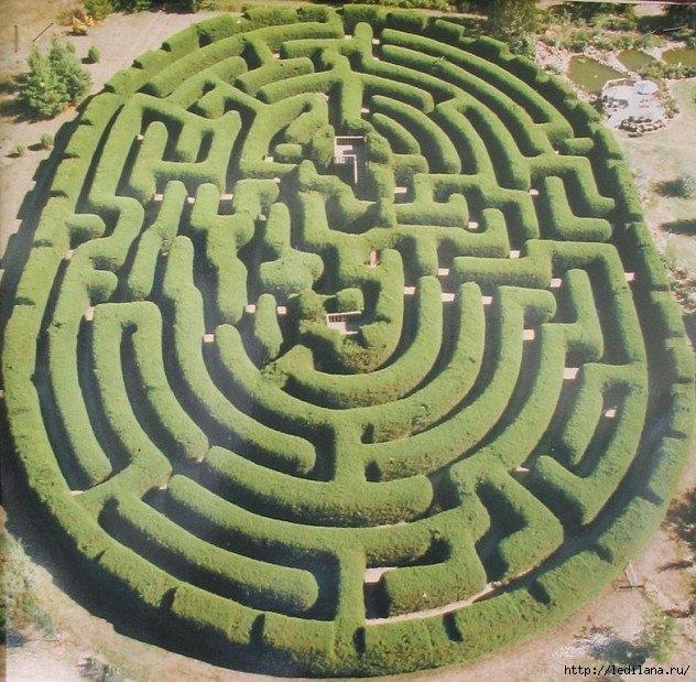 3925311_labirint (632x619, 291Kb)