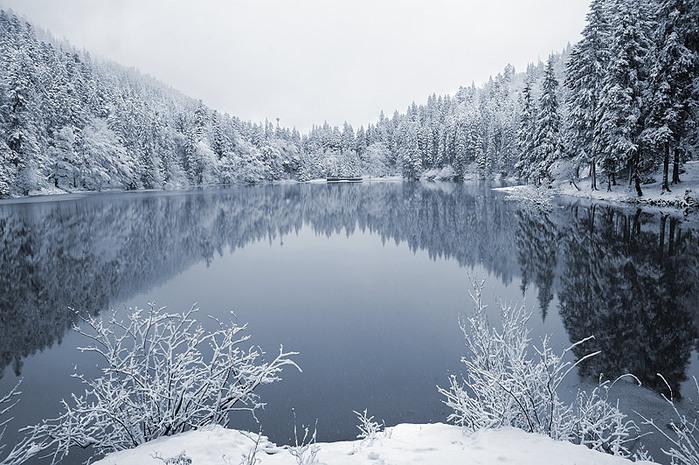 озеро Синевир зимой (800x565, 146Kb)