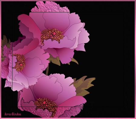 Розовые-маки-на-черном (450x396, 196Kb)