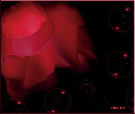 Алая-роза (450x378, 113Kb)