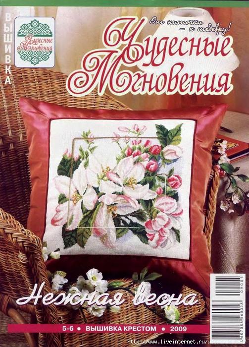 5282851_Chudesnye_mgnoveniya_20090506_1 (503x700, 371Kb)